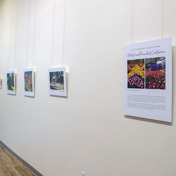 Viewpoint Gallery exhibit